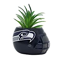 Ceramic Helmet Planter With Faux Succulent Officially Licensed Add a touch of nature and fandom to your fan cave, college dorm, home or office with our Team Pride Ceramic Helmet Faux Succulent. This faux version looks lifelike and is perfect for a de...
