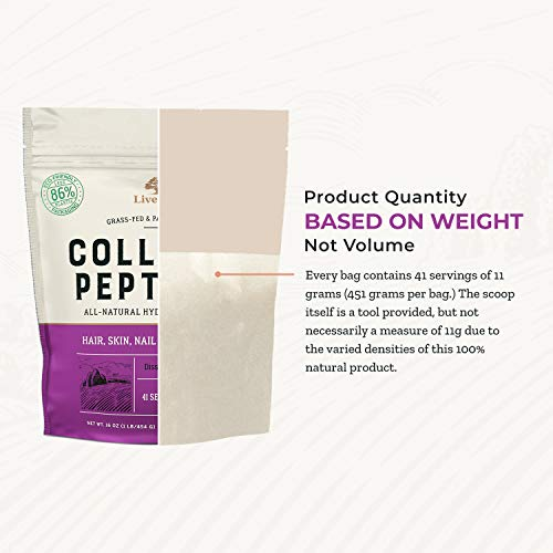 Collagen Peptides - Hair, Skin, Nail, and Joint Support - Type I & III Collagen - All-Natural Hydrolized Protein - 41 Servings - 16oz (Packaging May Vary) 6