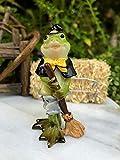TAKAHOME Miniature Dollhouse Fairy Garden Figurine ~ Mini Halloween Frog in Witch Costume DIY Miniature Garden Supplies for Outdoor & Home Decor