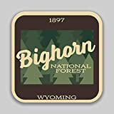 JB Print Bighorn National Forest Explore Wanderlust Camping Senderismo Vinilo adhesivo adhesivo impermeable para coche, calcomanía para parachoques de coche de 5 pulgadas