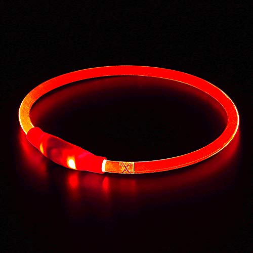 BSeen LED Dog Collar, USB Rechargeable, Glowing...