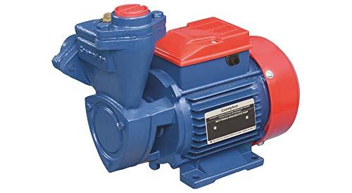 Crompton 1HP SP Mini Champ I Water Pump (Multicolour)