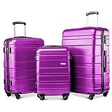 YINKUU Juego de 3 maletas de viaje con 4 ruedas de peso ligero, rígido, 20/24/28 pulgadas (morado)