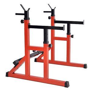 41cI1rPL mL - Home Fitness Guru