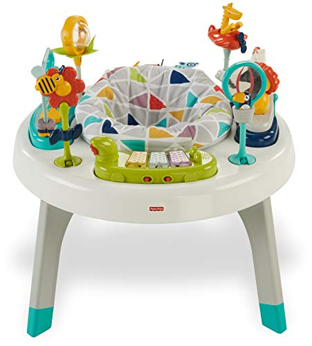 Fisher-Price 2-in-1 Sit-to-Stand...