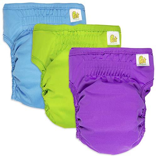 Pet Magasin Reusable Female Dog Diapers Panties, 3...
