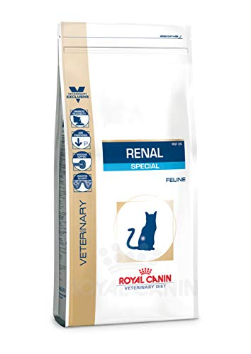 Royal Canin Renal Special dieta para gatos