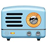 Muzen Portable Wireless High Definition Audio FM Radio & Bluetooth Speaker, Metal Sky Blue, Travel Case Included - Classic Vintage Retro Design