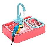Baignoire d'oiseau, Baignoire Automatique Perroquet avec Robinet,...
