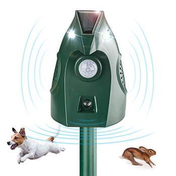 Répulsif solaire à ultrasons pour chat - Pas de lumière - Eau - Renard - Répulsif pour chien - Répulsif pour chat - Répulsif pour jardin