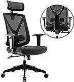 INTEY Chaise de Bureau Ergonomique, Fauteuil de Bureau Multi Protection...