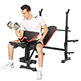 Hicient Olympic Weight Bench for Full Body Workout, Multifunctional Adjustable Weight Bench for Indoor Gym Home Fitness Exercise