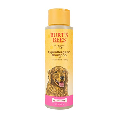 Burt's Bees for Dogs Hypoallergenic Dog Shampoo...
