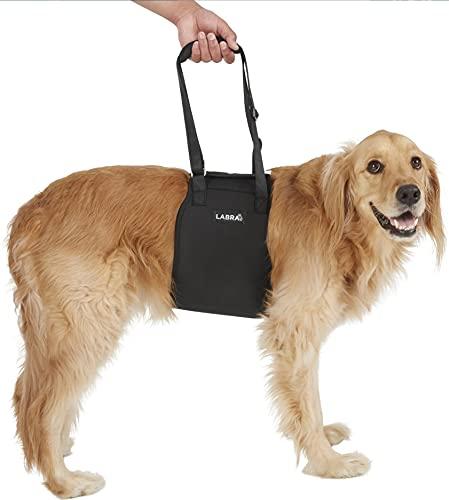 Large Veterinarian Approved Dog Canine K9 Sling...