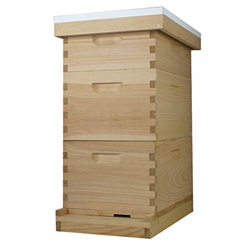 Busy Bee's -n- More Complete Langstroth Beehive