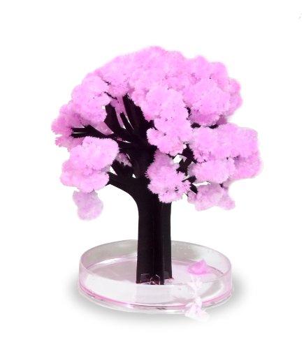 Thumbs Up! Magic Sakura El Asombroso árbol en Miniatura, Ro