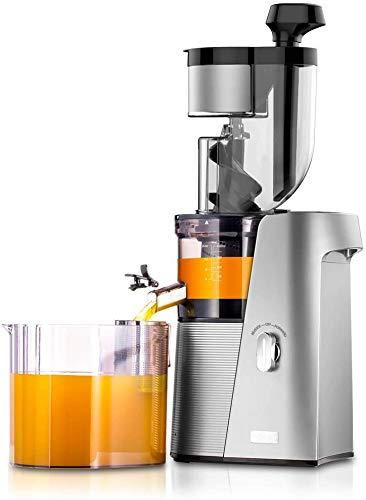 4. SKG A10 Cold Press Slow Masticating Juicer