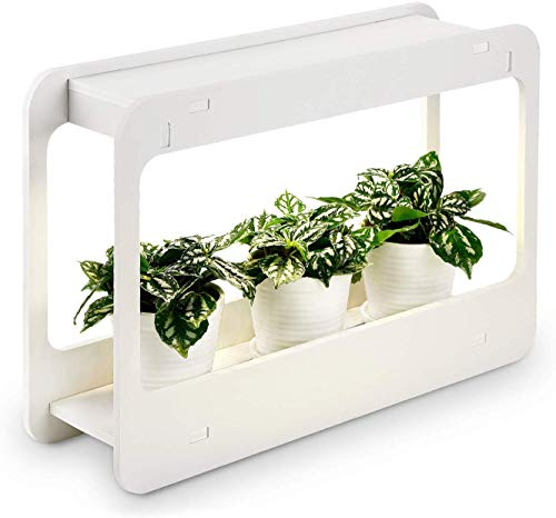 TORCHSTAR Plant Grow LED Light Kit, Indoor Herb Garden with Timer Function, 24V Low Voltage, Indoor Harvest Elite for Gourmet or Plant Enthusiasts, Rosemary, Lavender, Seed, Pod Ornamental Gift