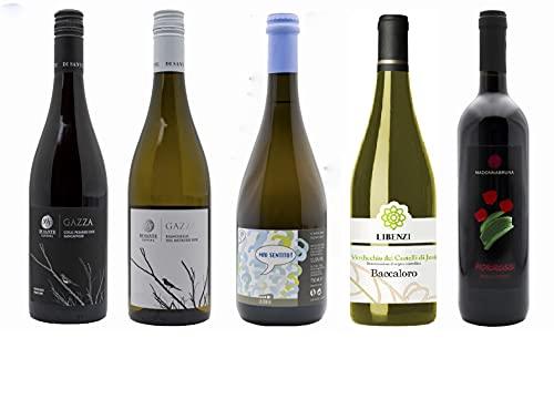 Set Degustazione Vini Marche - Rifermentato, Bianchello, Sangiovese, Verdicchio, Rosso Piceno - 5 bottiglie