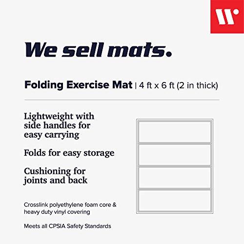 41lNRh+mpFL - Home Fitness Guru