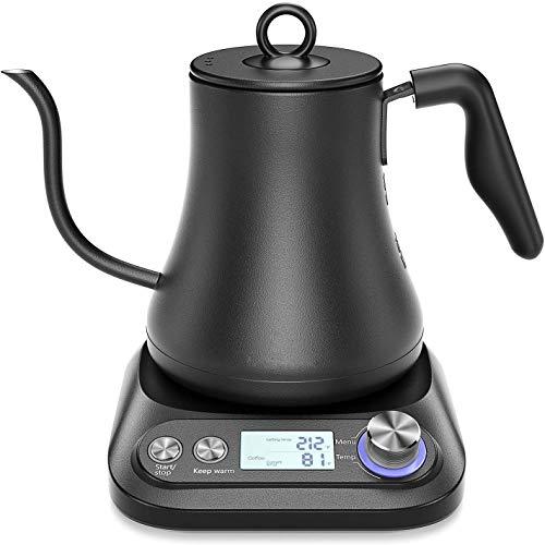 Jaybird Kaffe Variable Temperatur Edelstahl Wasserkocher mit Schwanenhals für Kaffeespezialitäten und Tee, Mattschwarz