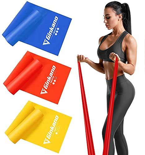 Haquno Bande Elastiche Fitness (3 Pezzi)1,5 m Fasce Elastiche con 3 Livelli di Resistenza, Fascia Elastica Esercizi Ideale per Yoga, Pilates, Allenamento di Forza e Flessibilit, Stretching