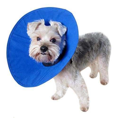 Alfie Pet - Soft Recovery Collar (for Dogs & Cats) - Color: Blue, Size: M