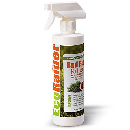 Bed Bug Killer by EcoRaider 16 oz, Fast and Sure Kill with...