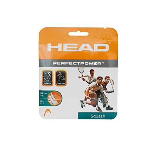 Head Perfect Power Squash String, 16L (White)