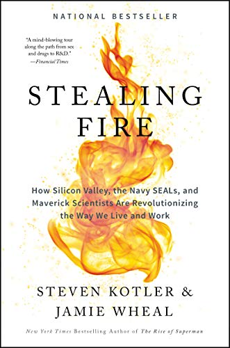 Stealing Fire: How Silicon Valley, the Navy SEALs, and Maverick Scientists Are Revolutionizing the W