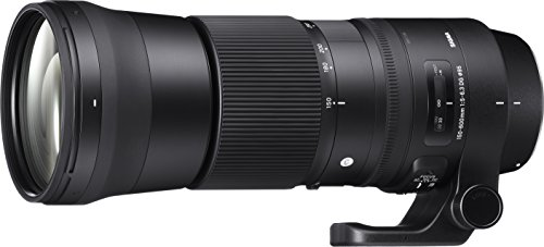 SIGMA 150-600mm F5-6.3 DG OS HSM   Contemporary C015   Canon EFマウント   Full-Size/Large-Format 745547