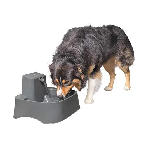 PetSafe Drinkwell 2 Gallon Dog Water Fountain -...