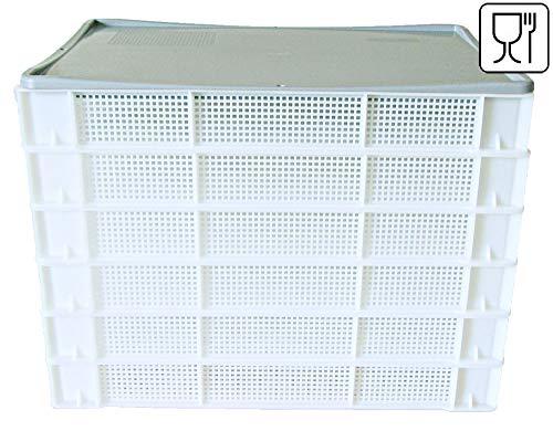 Palatis 6X Nudelhorde + 1x Auflagedeckel, Nudeltrockner Nudelständer Kräutertrocknung 600 X 400 X 80mm