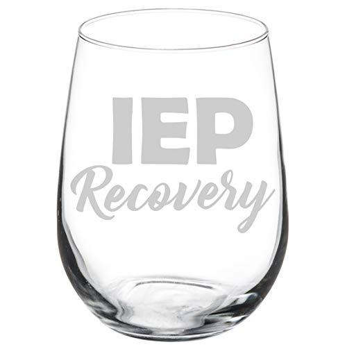 Wine Glass Goblet Special Education Teacher IEP Recovery (17 oz Stemless)