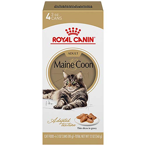 Royal Canin Maine Coon Breed Thin Slices in Gravy Adult Wet Cat Food, 3 oz, 4 cans