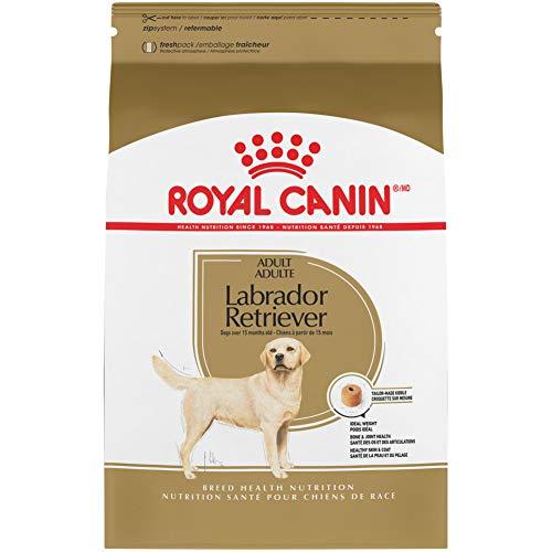 Royal Canin 453735Labrador Retriever Adult Breed...
