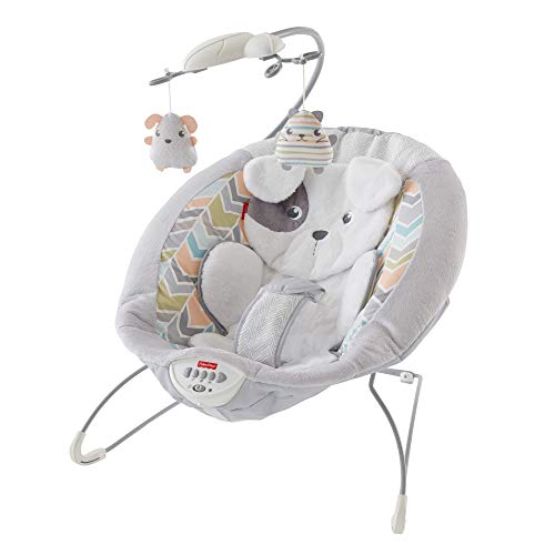 Fisher-Price Sweet Snugapuppy Deluxe Bouncer,...