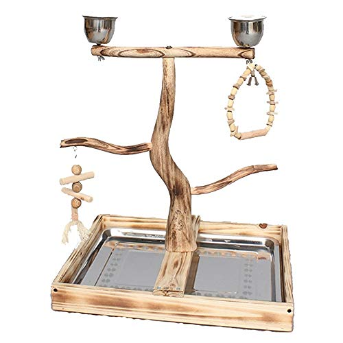 Bird | AiKuJia Bird Stand Bird Stand Wooden Suitable for Darling New Home Parrot Game Climbing Playground Birds Shelf Swing (Color : Wood, Size : 48x38x59cm), Gym exercise ab workouts - shap2.com