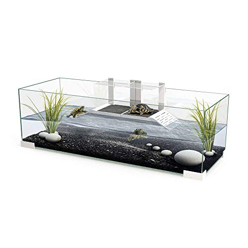 CIANO : Aquarium Tortue : Verre, 57,2l