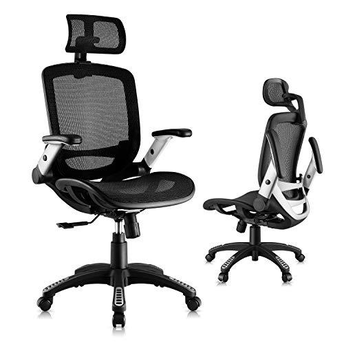 Gabrylly Ergonomic Mesh Office Chair, High...