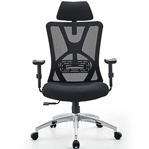 Ticova Ergonomic Office Chair - High Back Desk...