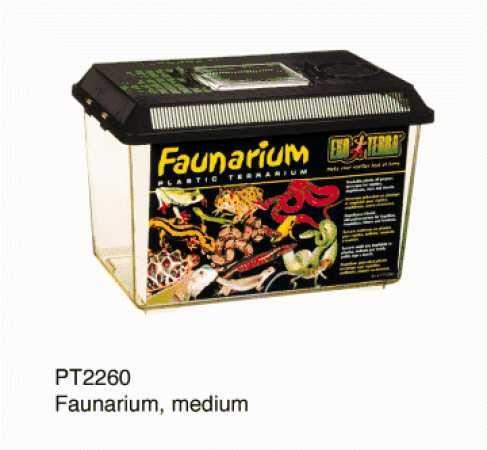 Terrarium | Diverse groottes | Middel 540 gram | Middel 30 x 19,3 x 20,6 cm
