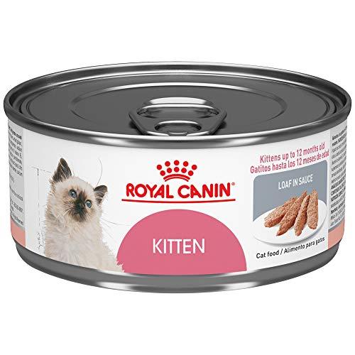 Royal Canin Feline Health Nutrition Loaf in Sauce Wet Kitten Food