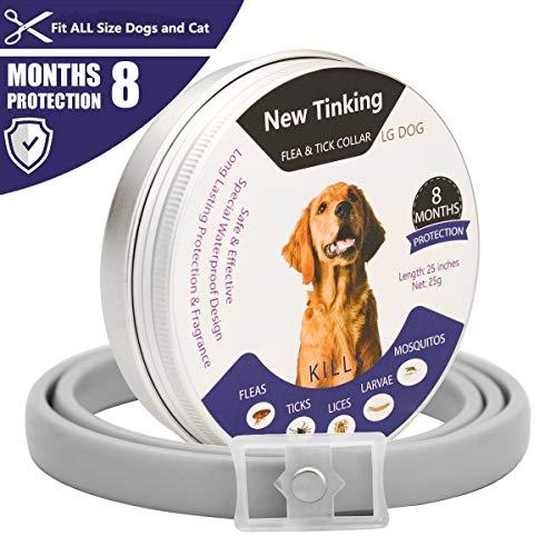 LAOYE Collar de pulgas - 8 Meses de protección el Collar de Perro con...