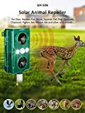 Chanshee Newest Two Sound Wave Speakers Solar Animal Repellent with Smart Mode Scares Away Cats, Dogs, Squirrels, Deer, Raccoon, Groundhog, Skunk,Birds etc