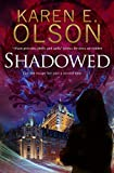 Shadowed: A thriller (A Black Hat Thriller)