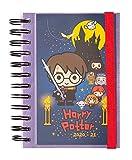 Erik - Agenda Scolaire Journalier 2020/2021 Petit Format   Harry Potter   11...