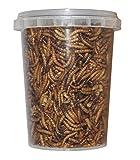 Vers séchés congelés- 500 ml - Nourriture pour reptiles,...
