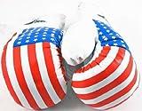 Shelter 1 Pair USA Flag 10 oz Boxing Punching Gloves