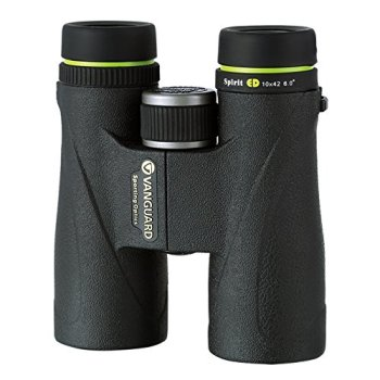 Vanguard 10x42 Sprit ED Binocular (Black)